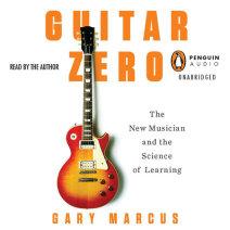 Guitar Zero Cover