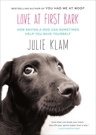Love at First Bark by Julie Klam