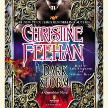 Dark Storm Cover
