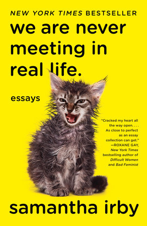 We Are Never Meeting in Real Life. Book Cover Picture