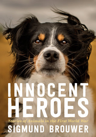 Innocent Heroes by Sigmund Brouwer