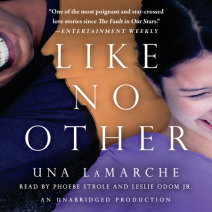 Like No Other Cover