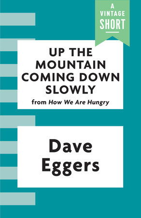 Up the Mountain Coming Down Slowly by Dave Eggers