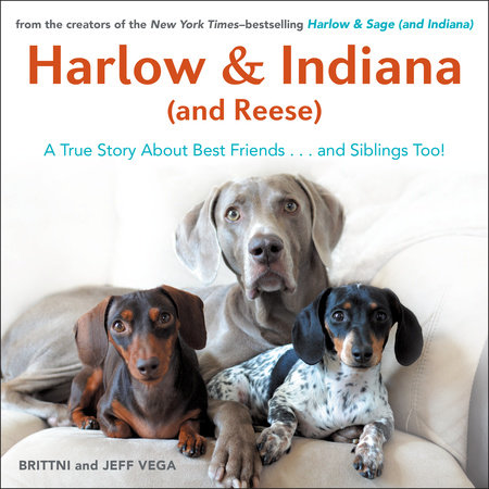 Harlow & Indiana (and Reese) by Brittni Vega