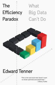 The Efficiency Paradox