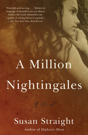 A Million Nightingales by Susan Straight