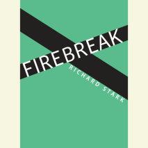 Firebreak Cover
