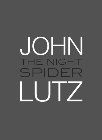 The Night Spider cover