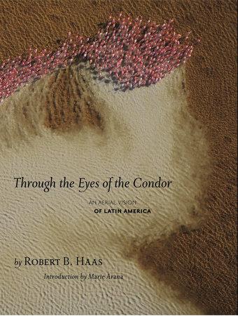 Through The Eyes Of The Condor