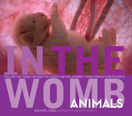 In the Womb: Animals by Michael Sims