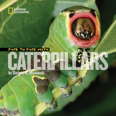 Face to Face with Caterpillars by Darlyne A. Murawski