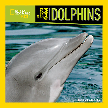 face to face with dolphins by flip nicklin linda nicklin