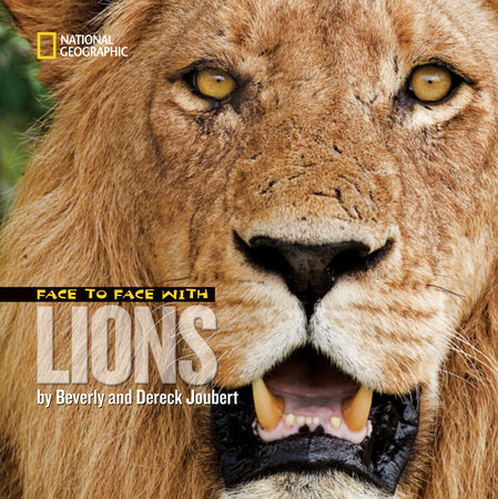 Face to Face with Lions by Dereck Joubert