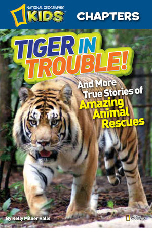 National Geographic Kids Chapters: Tiger in Trouble! by Kelly Milner Halls