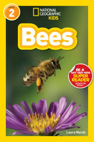 National Geographic Readers: Bees