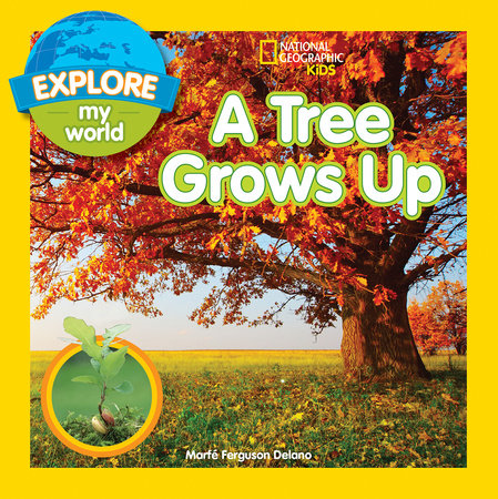 Explore My World A Tree Grows Up
