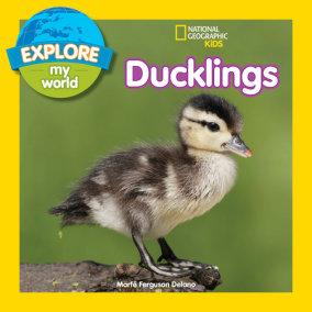Explore My World: Ducklings