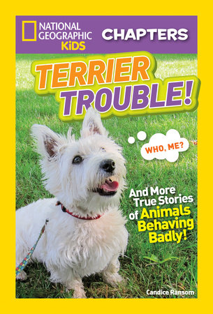 National Geographic Kids Chapters: Terrier Trouble! by Candice Ransom
