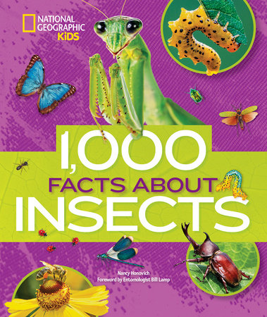1,000 Facts About Insects by Nancy Honovich