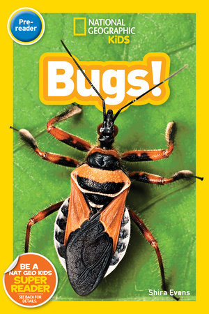 National Geographic Kids Readers: Bugs (Pre-reader) by Shira Evans
