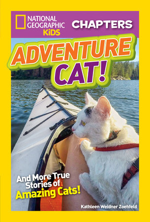 National Geographic Kids Chapters: Adventure Cat! by Kathleen Weidner Zoehfeld