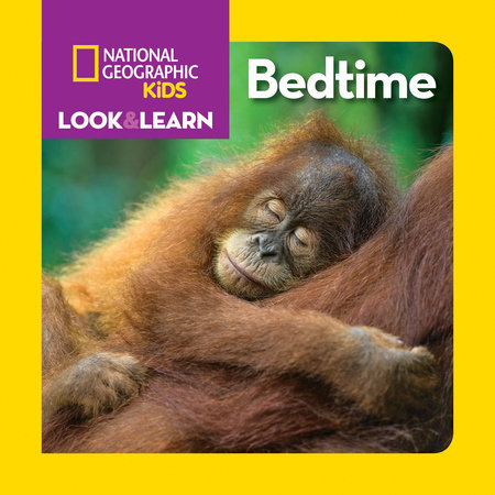 Look & Learn: Bedtime by Ruth A. Musgrave