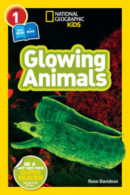 National Geographic Readers: Glowing Animals (L1/Co-Reader)