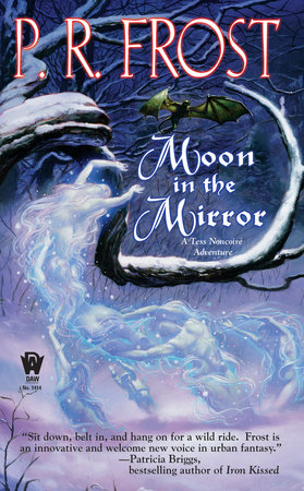 Moon In The Mirror by P. R. Frost