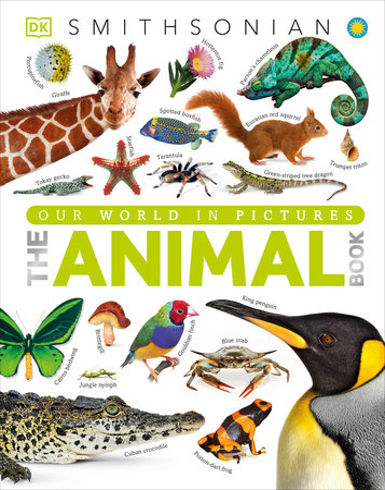The Animal Book by David Burnie