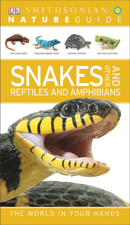 Nature Guide: Snakes and Other Reptiles and Amphibians by DK Publishing