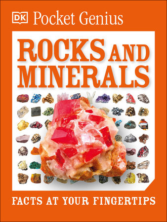 Pocket Genius: Rocks and Minerals by DK