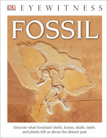 DK Eyewitness Books: Fossil (Library Edition)