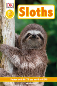 DK Readers Level 2: Sloths
