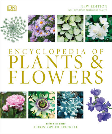 Encyclopedia Of Plants And Flowers By Christopher Brickell