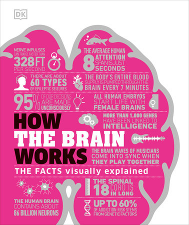 How the Brain Works by DK