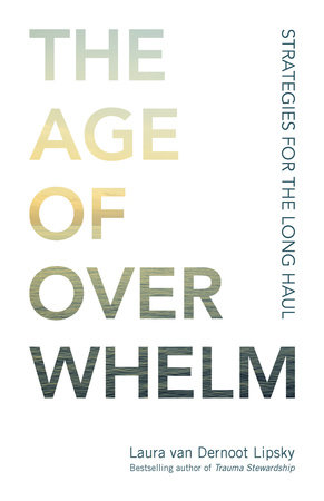 The Age of Overwhelm by Laura van Dernoot Lipsky