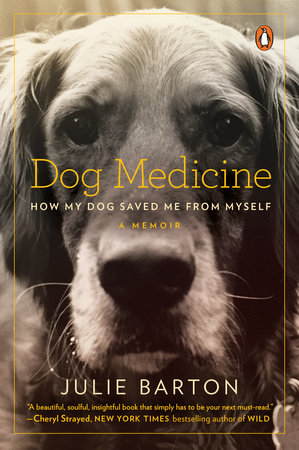 Dog Medicine cover