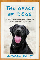 The Grace of Dogs Cover