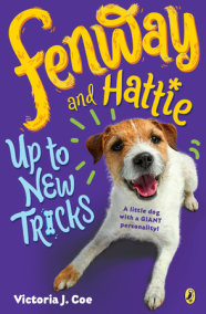 Fenway and Hattie Up to New Tricks