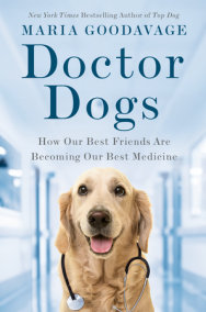 Doctor Dogs