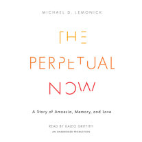The Perpetual Now Cover