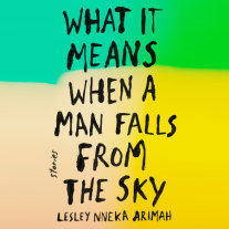 What It Means When a Man Falls from the Sky Cover