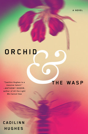 Orchid and the Wasp Book Cover Picture