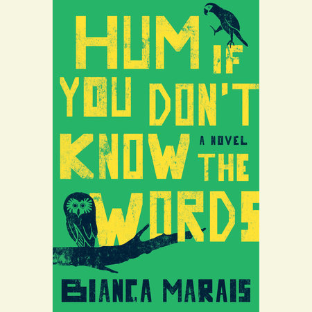 Hum If You Don't Know the Words by Bianca Marais