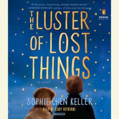 The Luster of Lost Things cover
