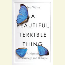 A Beautiful, Terrible Thing Cover