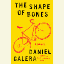The Shape of Bones Cover
