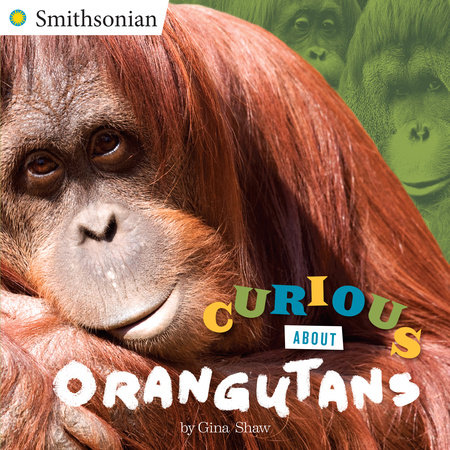 Curious About Orangutans by Gina Shaw