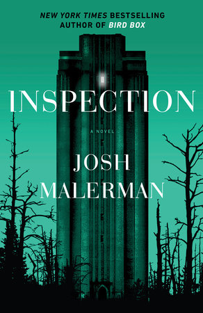 The cover of the book Inspection