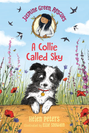 Jasmine Green Rescues: A Collie Called Sky by Helen Peters ...